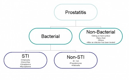 The causes of Prostatitis
